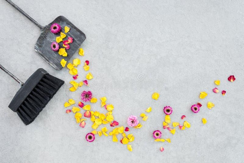 Lejos flores secas arrebatadoras y pétalos color de rosa en el patio del jardín imagen de archivo libre de regalías
