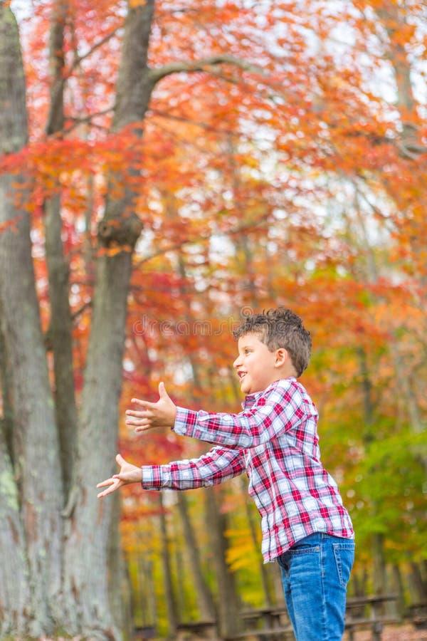 leka för pojkegräs royaltyfri bild