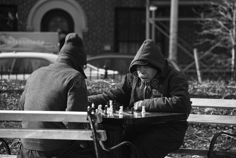 leka för schackmän royaltyfri fotografi