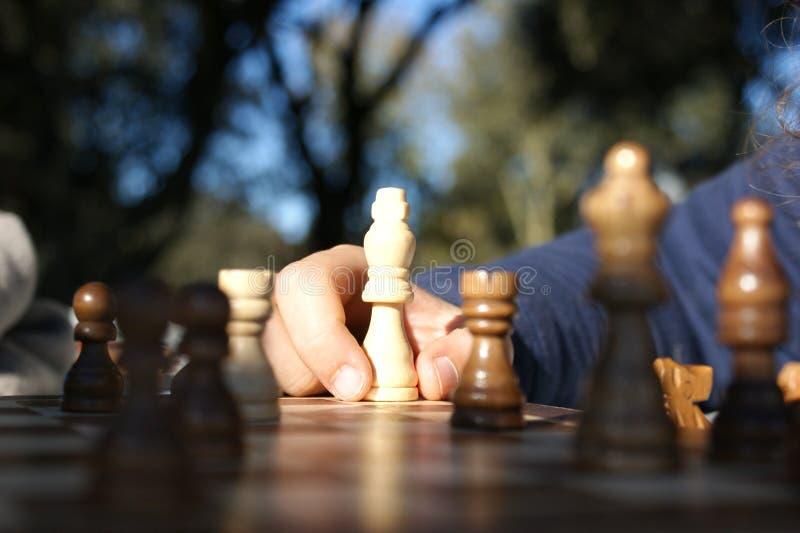 leka för schackunge arkivfoton
