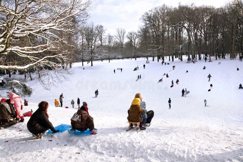 Leka i en vinterpark. arkivbilder