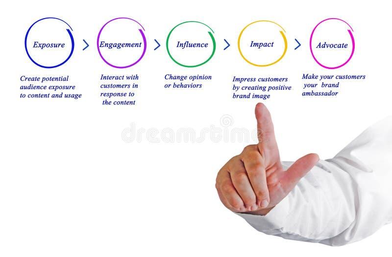 Leka proces rozwoju obrazy stock