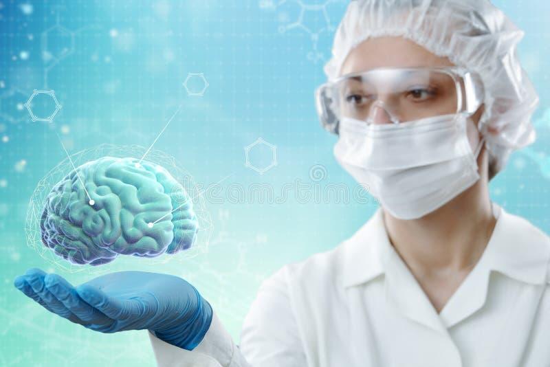 Lekarka pokazuje mózg osoba na błękitnym tle E obrazy stock