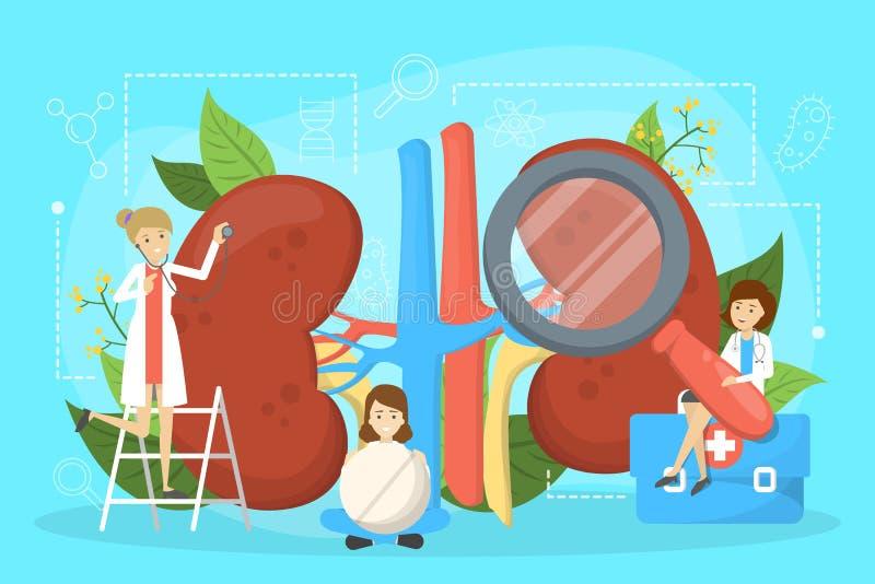 Lekarka robi cynaderki egzaminowi Pomysł medyczny royalty ilustracja