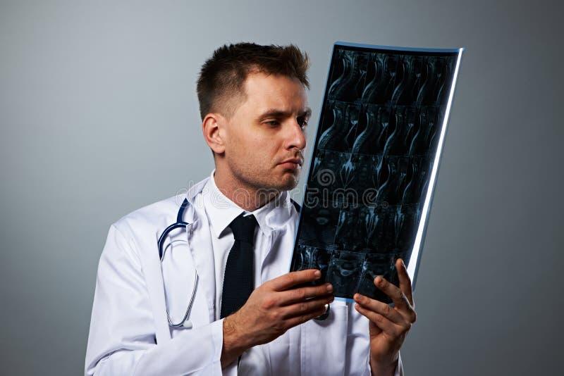 Lekarz medycyny z MRI dordzeniowym obrazem cyfrowym zdjęcia royalty free