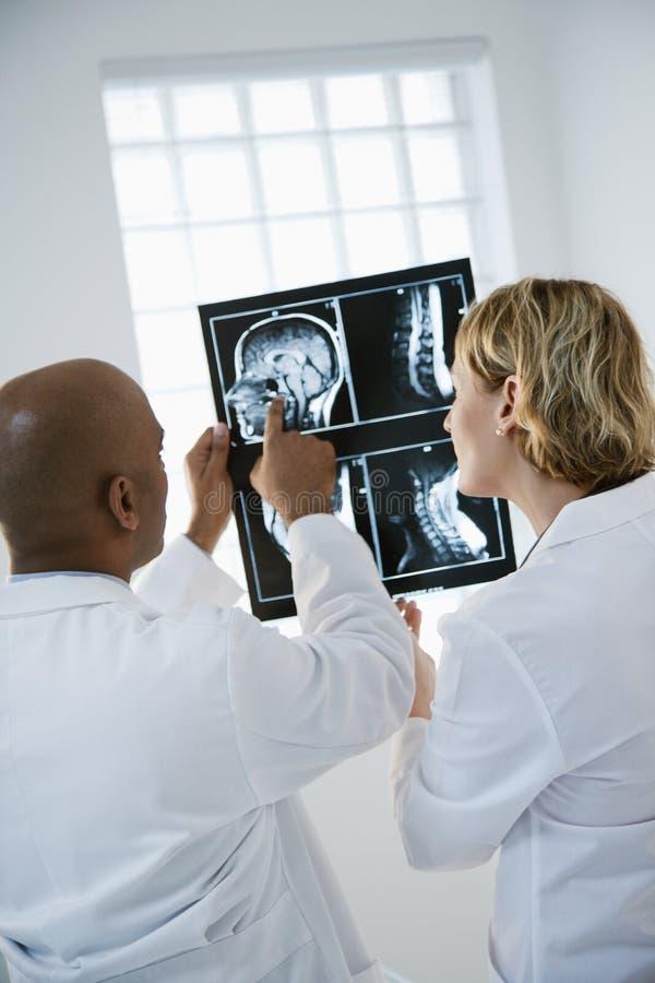lekarze analizować xray obrazy stock