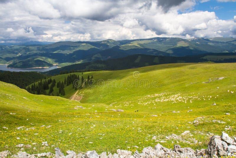 Download Leke w górach obraz stock. Obraz złożonej z lato, spadek - 57667715