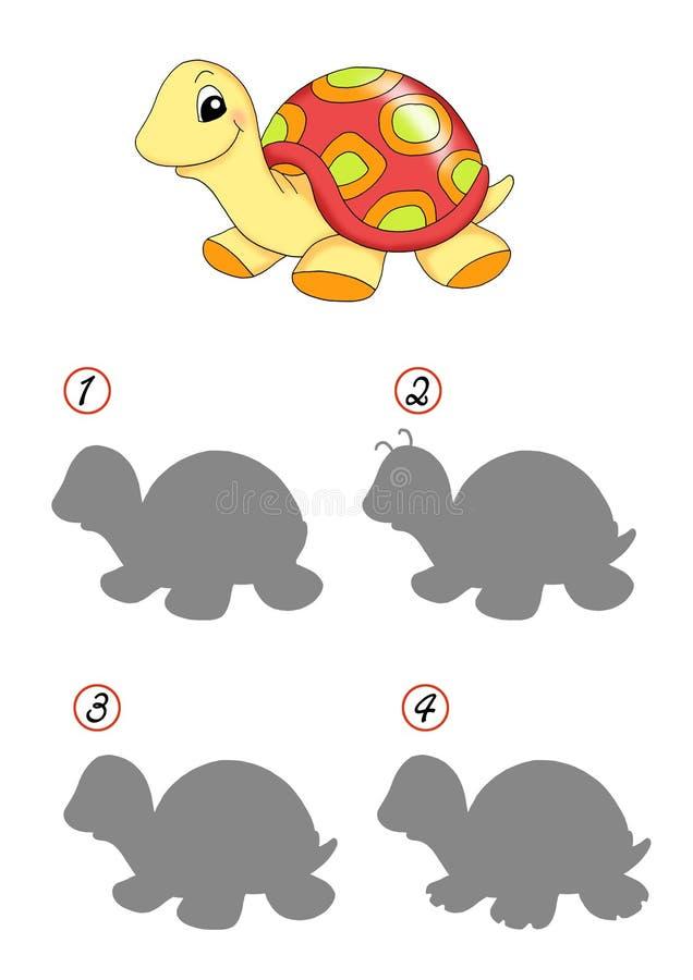 Leken av skuggar, sköldpaddan royaltyfri fotografi
