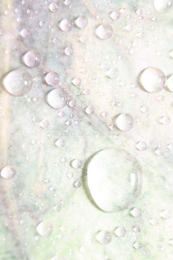 lekka tło kropli wody zdjęcie royalty free