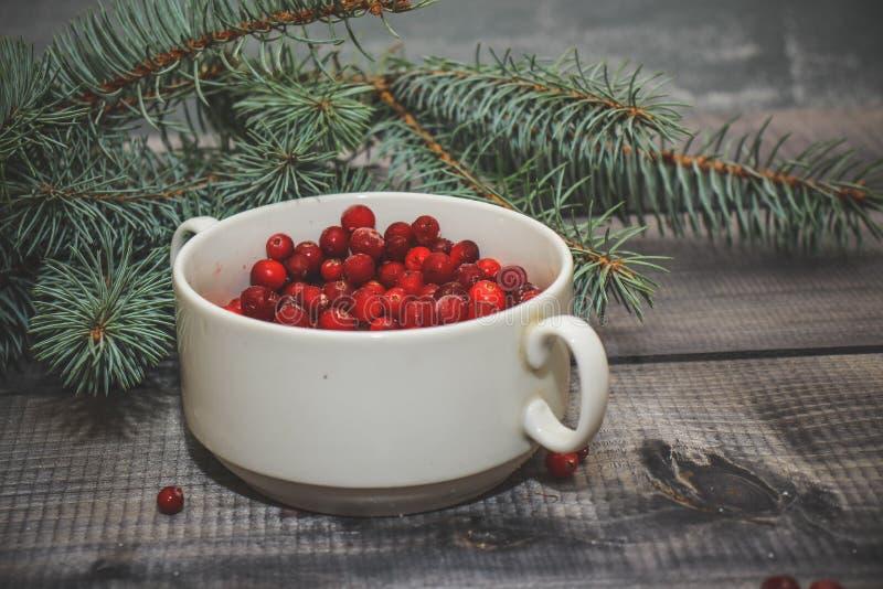 Lekki drewniany stołowy wierzchołek z filiżanką świeże czerwone jagody dekorował z świerkowym sprig obraz royalty free