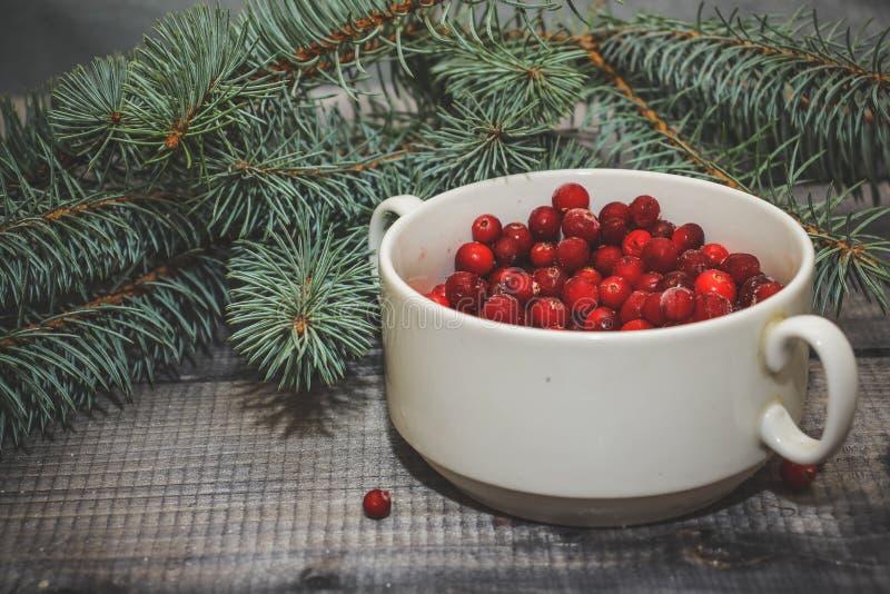 Lekki drewniany stołowy wierzchołek z filiżanką świeże czerwone jagody dekorował z świerkowym sprig fotografia stock