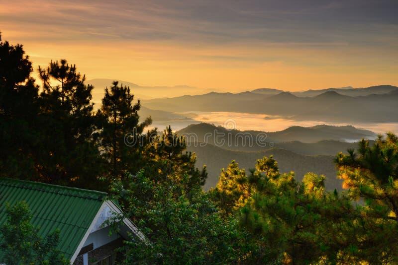 Lekki morze mgły góry las zdjęcie royalty free