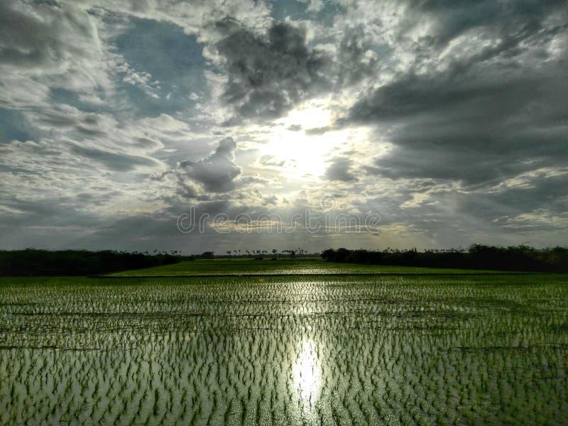 Lekki odbija gospodarstwo rolne fotografia stock