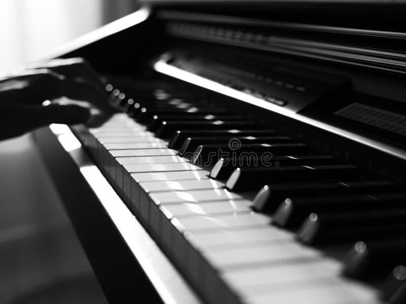 Lekki spada puszek przy fortepianowymi kluczami pięknie obraz stock