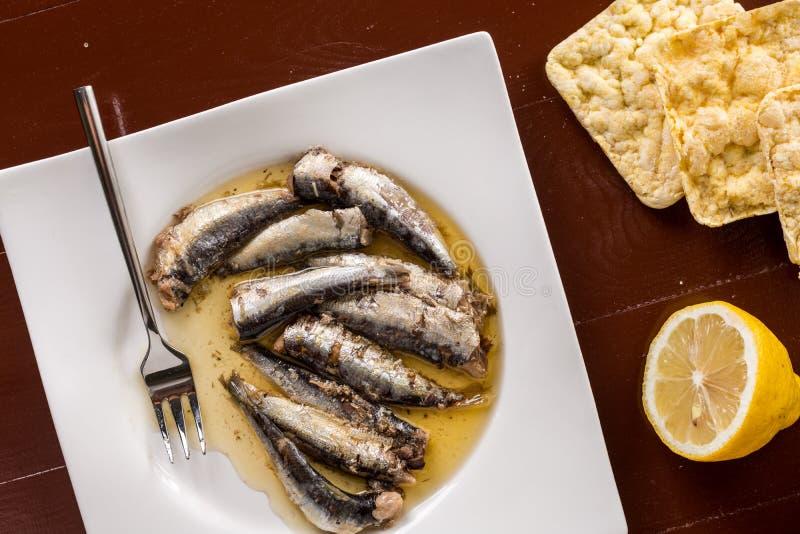 Lekmanna- över marinerade sardiner för lägenhet i oljan med citron- och havrebröd arkivbilder