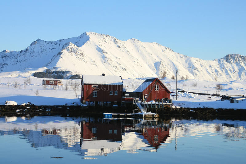 Leknes haven. Two red houses mirroring in the calm water of leknes port royalty free stock photo