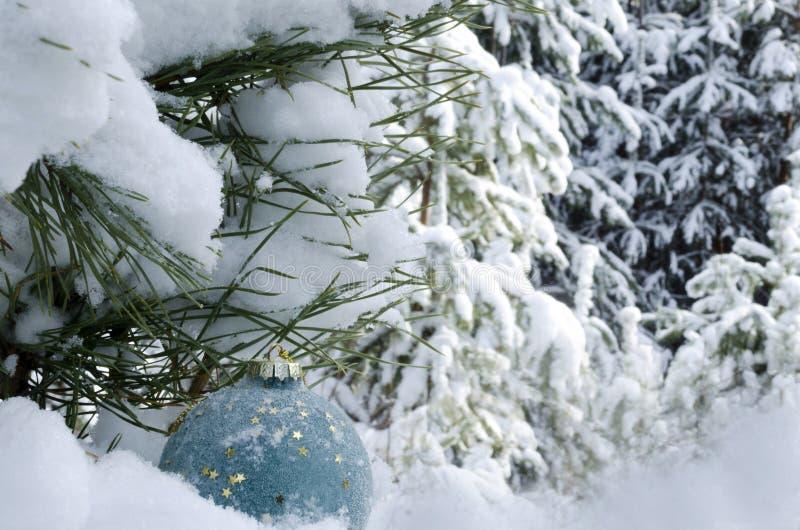 Leksak för nytt år på bakgrunden av träd som täckas med snökopieringsutrymme arkivbilder