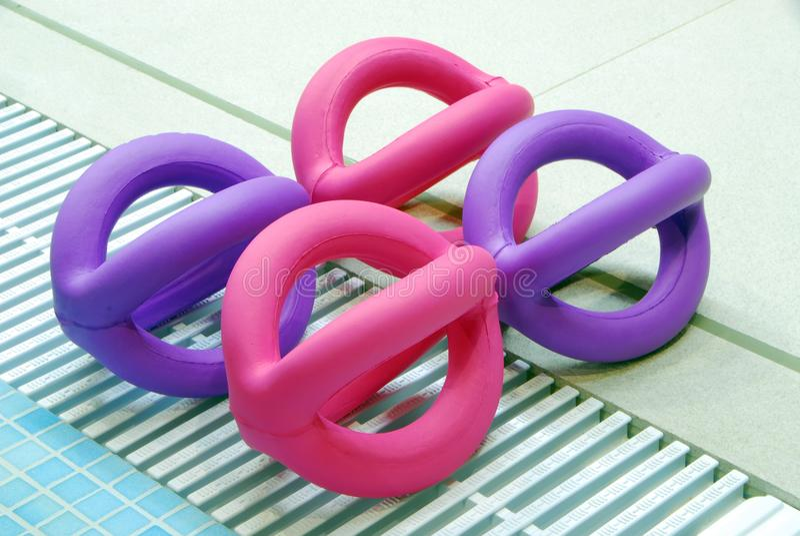Leksaker för att lär ska simma i simbassängen royaltyfria bilder