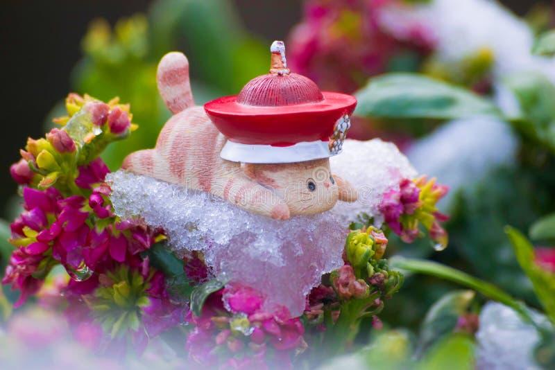 Leksakkattlögn som är benägen på is av blommor royaltyfri foto