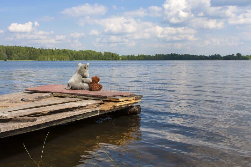 Leksakvarg och nallebjörn som sitter på bryggan nära sjön arkivfoton