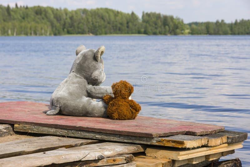 Leksakvarg och nallebjörn som sitter på bryggan nära sjön arkivbilder