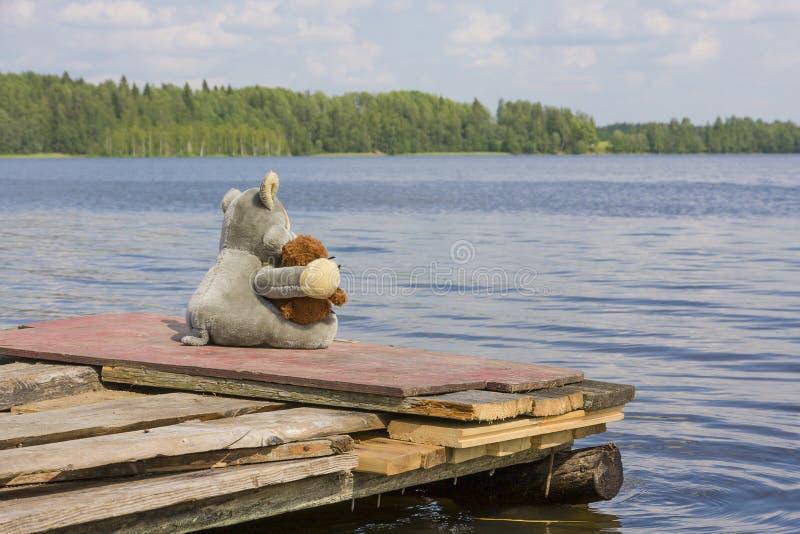 Leksakvarg och nallebjörn som sitter på bryggan nära sjön fotografering för bildbyråer