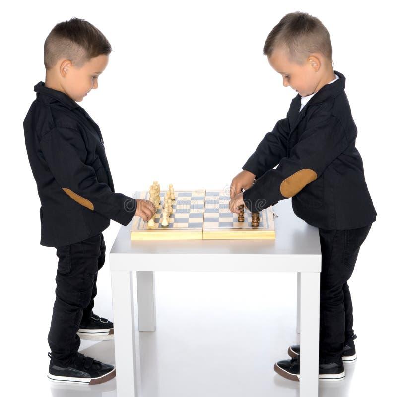 Lekschack för två pyser royaltyfria bilder