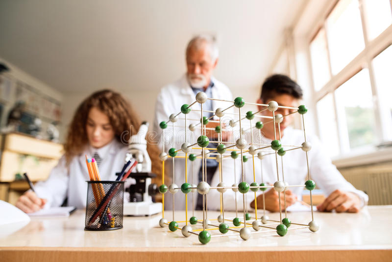 Lektorundervisningbiologi till högstadiumstudenter i arbete arkivbild