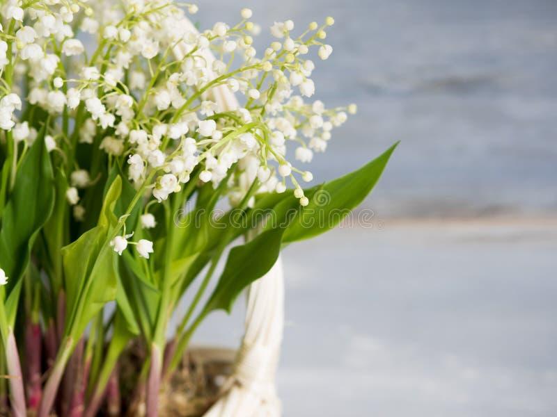 Lelies in een witte rieten mand Verse de lentebloemen als gift Vrije ruimte op het recht voor tekst of ontwerp stock foto's