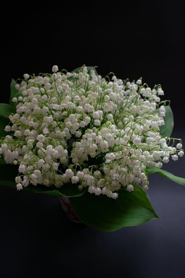 Lelietje-van-dalenbloemen op een zwarte achtergrond 1 stock foto's