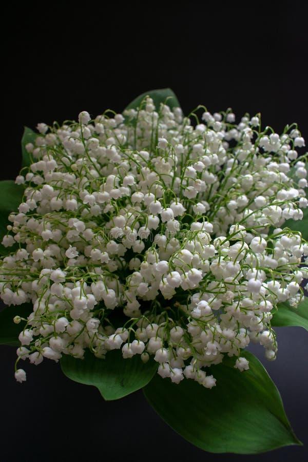 Lelietje-van-dalenbloemen op een zwarte achtergrond 4 royalty-vrije stock afbeeldingen