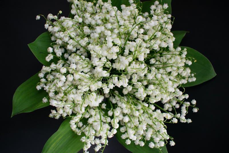 Lelietje-van-dalenbloemen op een zwarte achtergrond 5 stock afbeelding