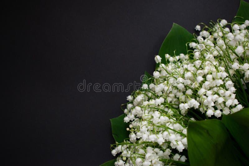 Lelietje-van-dalenbloemen op een zwarte achtergrond 7 royalty-vrije stock afbeeldingen
