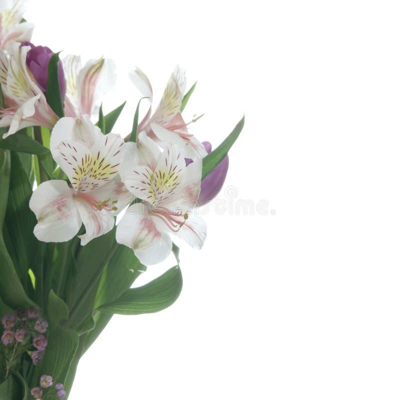 Leluja kwiatu bukiet zdjęcia stock