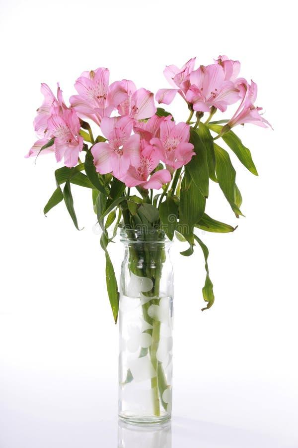 leluje różowią wazę obraz stock