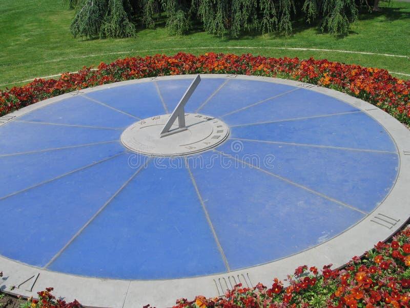 Lemański kwiatu zegar zdjęcie stock