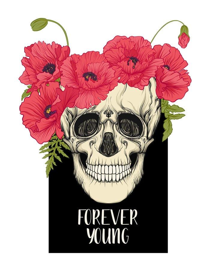lema de los cráneos libre illustration