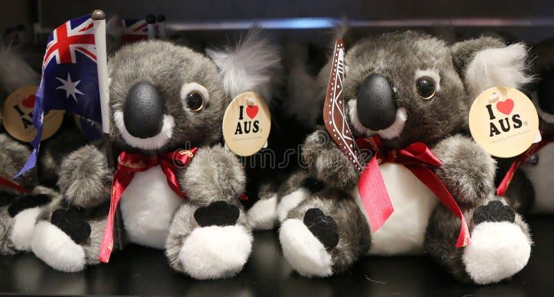 Lembranças australianas na exposição no aeroporto internacional de Melbourne fotos de stock
