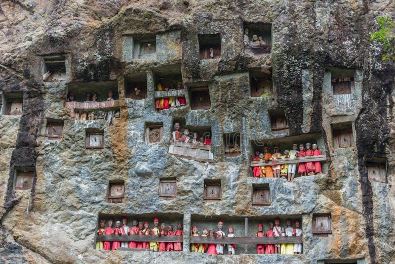 Lemo塔娜Toraja,南苏拉威西岛,印度尼西亚,有在洞安置的棺材的著名掩埋处被雕刻入岩石,守卫由ba 库存图片