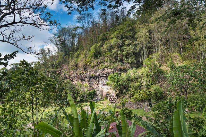 Lemo是峭壁掩埋处在塔娜Toraja,南苏拉威西岛,印度尼西亚 免版税库存图片
