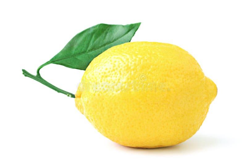 Lemon royalty free stock photos