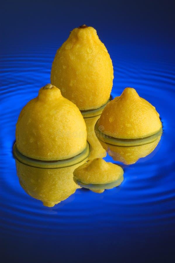 Download Lemon stock image. Image of surface, subtropical, sour - 1910959