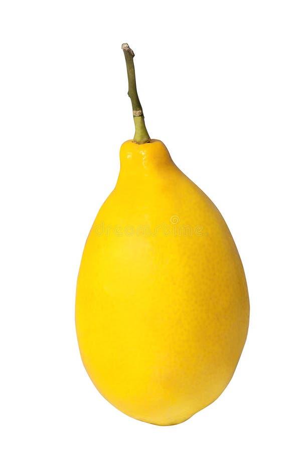 Download Lemon Stock Image - Image: 28900101