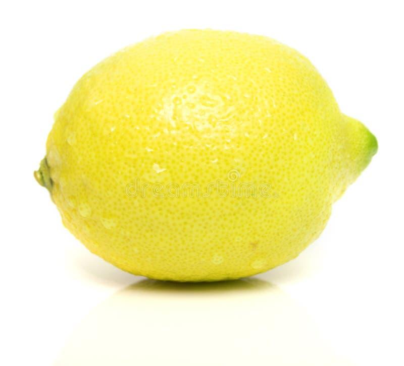 lemon 3 obraz royalty free