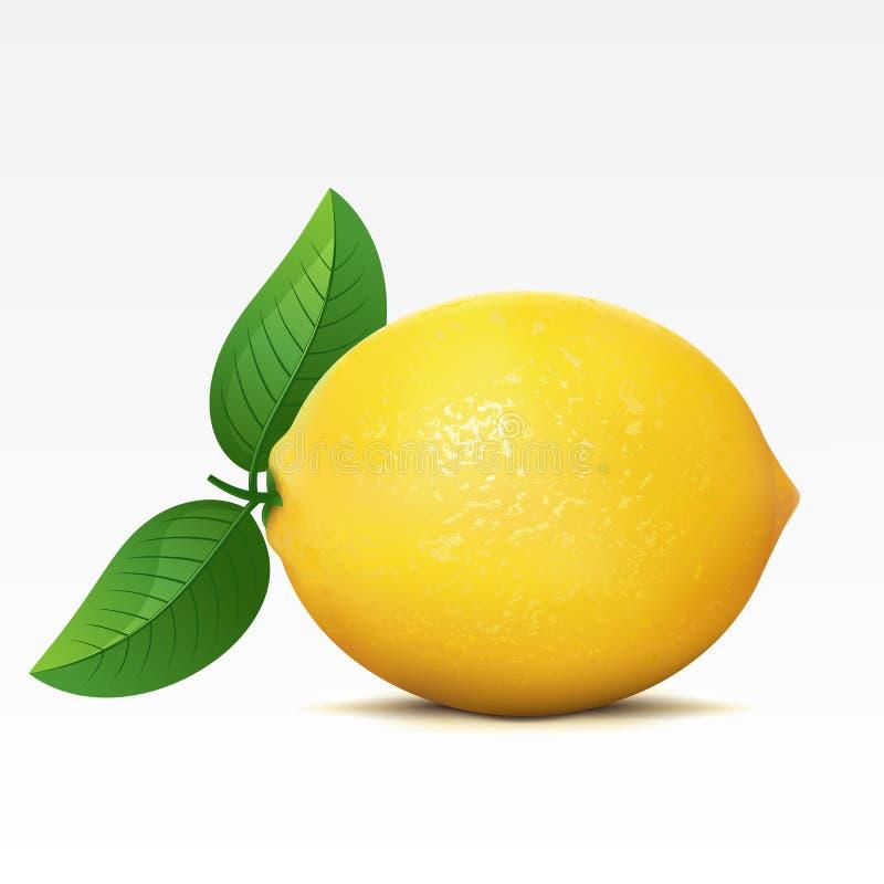 Lemon. On a white background