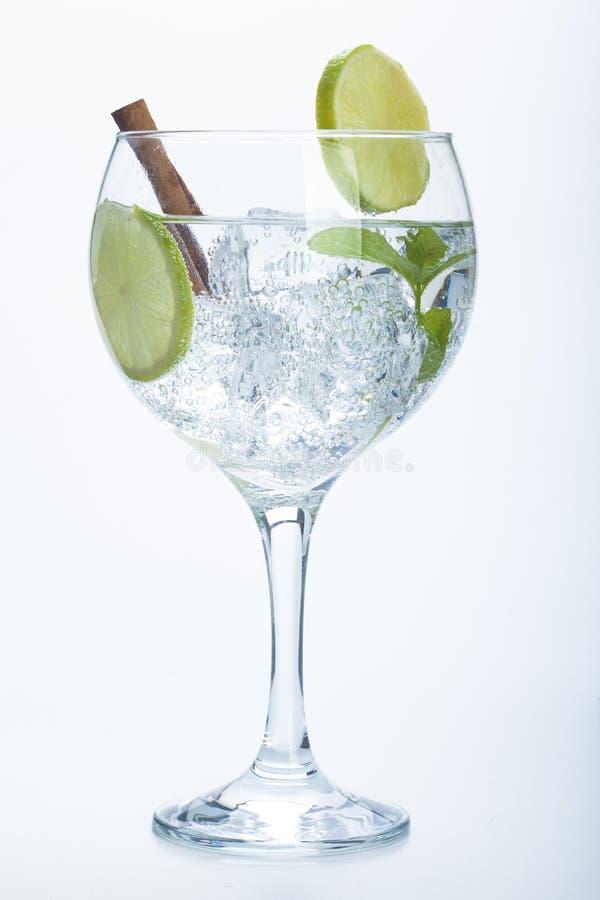 Free Lemon And Cinnamon Gin Tonic Isolated Over White Stock Image - 36803491