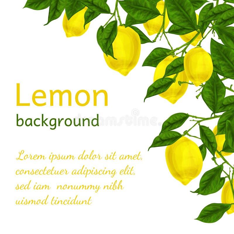 Download Lemon background poster stock vector. Illustration of dietary - 39503154