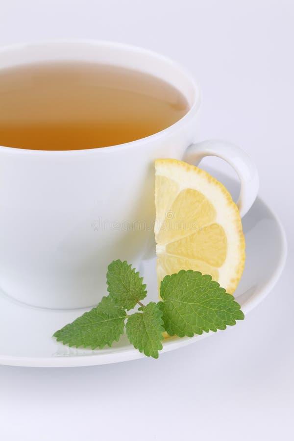 Lemon balm and lemon