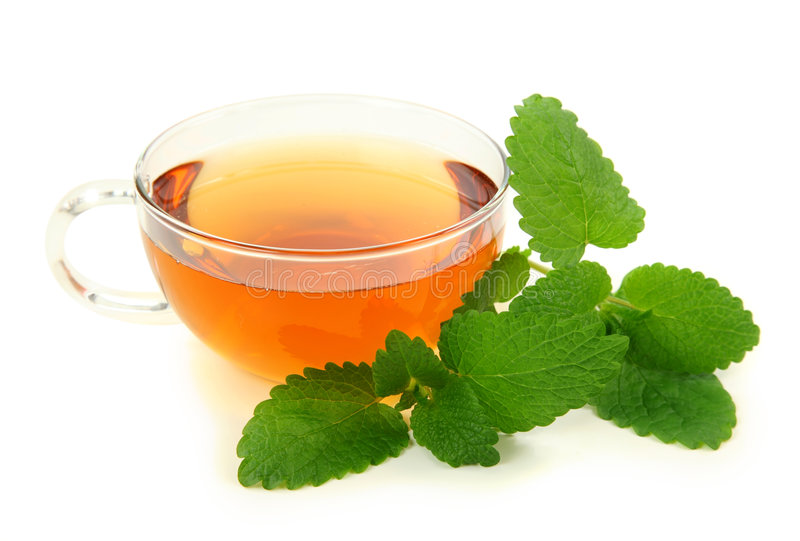 Lemon balm tea royalty free stock photo