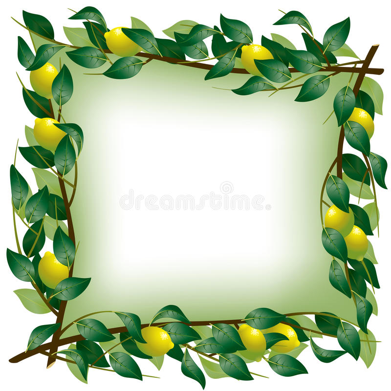 Download Lemon branch frame stock vector. Illustration of clean - 23206377